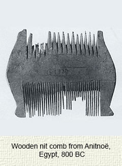 Egyptian wooden comb
